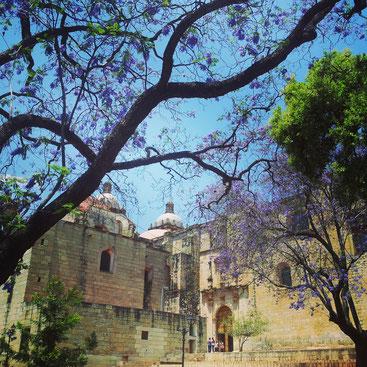 Beautiful streets in Oaxaca