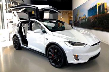 elektronisches Fahrtenbuch Tesla X