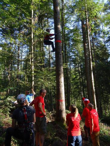 Grimper un arbre de 21 mètres... Ca vous dit? =)