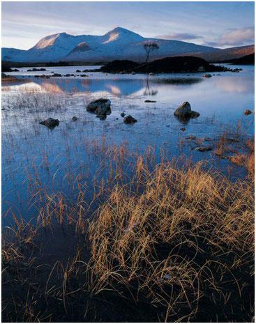 Блэк маунт, Раннох-Мур, Шотландия. Фото Джо Корниша. 1998 г.