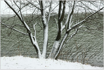 Первый снег. Царицыно. 2006 г.