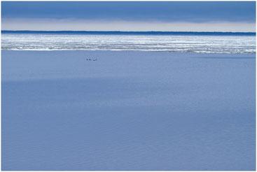 Белое озеро. Белозерск. Май 2011 г.