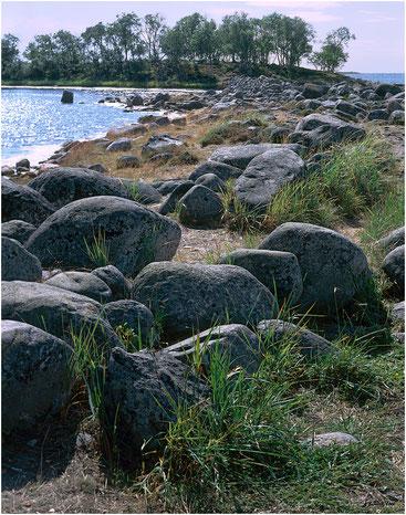 Филипповские садки. Большой Соловецкий остров, Архангельская обл. 2006 год.