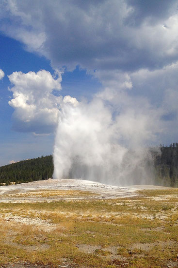 Old Faithful, Yellowstone (Foto NP)