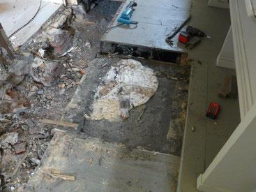 Frischer Schwammkörper im unteren Fußboden, westlicher Eingang