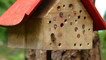 Mit einer fachmännisch gefertigten Nisthilfe bieten Sie Wildbienen einen Platz zur Eiablage (Foto: Peter Bria, LBV-Bildarchiv)