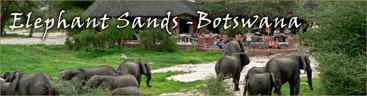 Elephants Sands Lodge