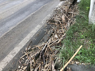 押し寄せられて側溝が木切れであふれています。