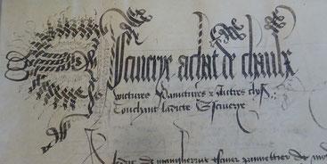 Escuierye, achat de chevaulx, voictures, painctures et autres choses touchant ladicte escuierye. © Archives départementales du Nord, B 2008, f° 319 r°.