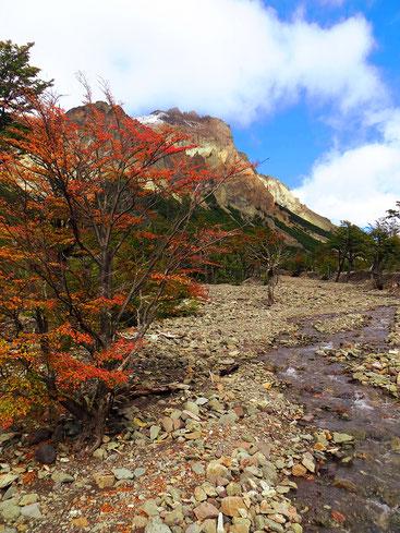 Herbstliches Patagonien