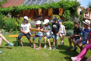 Interessiert betrachten die Kinder die Bienenwabe.