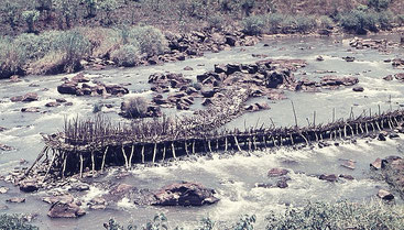 Nzoia River, Kenya 1971