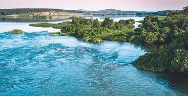 Lago Vittoria - Uganda