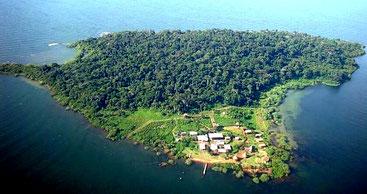 Isola di Ngamba - Lago Vittoria, Uganda