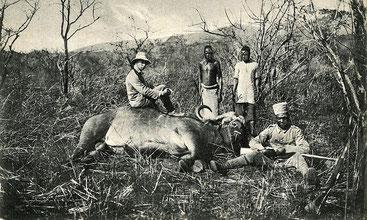 Caccia grossa in Africa