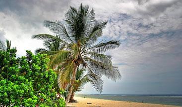 Litorale a sud di Mombasa - Tiwi Beach