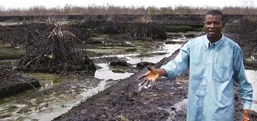 Inquinamento da petrolio nel Delta del Niger