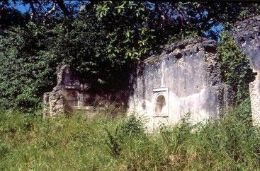 Shanga mosque ruins