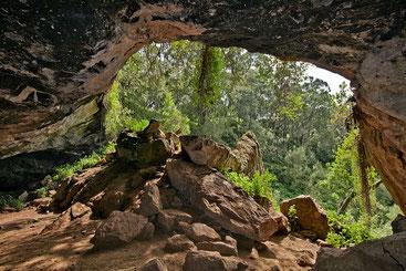 Grotta Kitum. Monte Elgon - Alle origini dell'Ebola