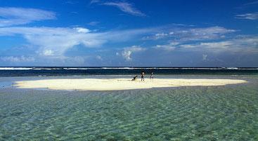 Isola di sabbia nel Parco marino di Mombasa (che scompare rapidamente con l'arrivo della marea)