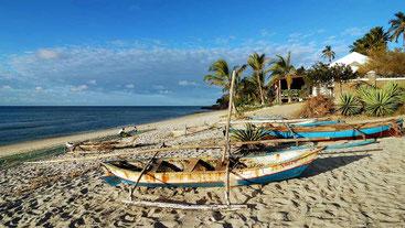 Isola di Pemba-Arcipelago di Zanzibar