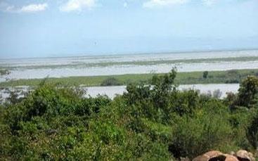 Isola di Maboko - Lago Vittoria, Kenya