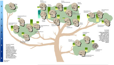 Albero genealogico degli Hominini