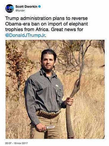 Il tweet di Scott Dworkin con la foto di Donald Trump Jr. con la coda di un elefante appena ucciso
