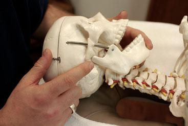 Physiotherapie - Duisburg - CranioMandibuläreDysfunktion