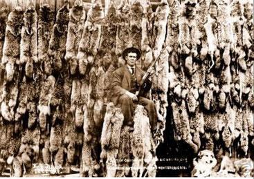 オオカミの毛皮とハンター