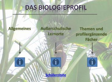 Biologieprofil