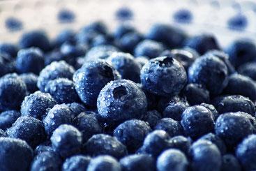 Simple Skin Ernährungstagebuch