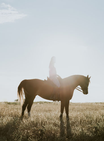 Photo by Fernando Puente on Unsplash