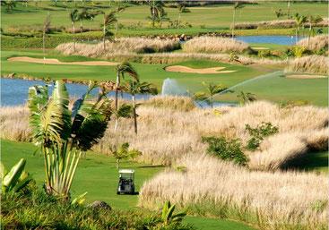 Golfs à L'ile Maurice