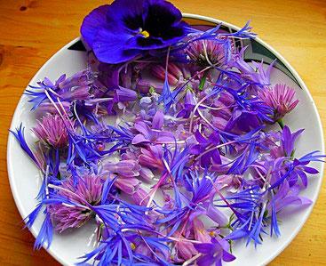 Blaue Blüten Mischung