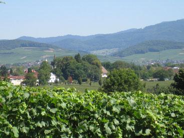 Bad Krozingen, au milieu de trois pays