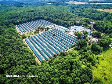 Luftbildaufnahme von der SMEURA