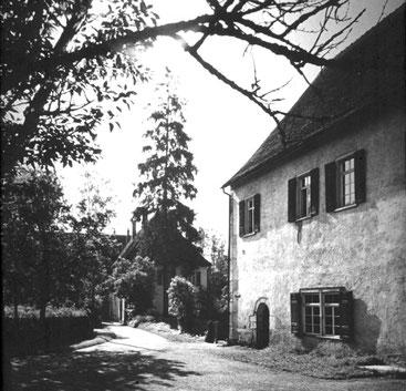 Ausgezeichnet Klosterschänke Nimbschen Fotos - Innenarchitektur ...