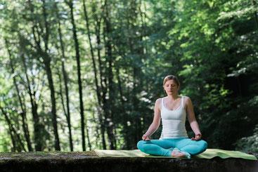 Meditation Mollis