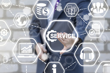 ISEC7 for SAP solutions Inspection & Service Customer Service (CS)