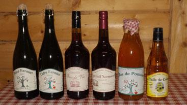 produit , cidre , poiré , eau de vie , apéritif normand , huile de colza , cidrette , jus de pomme , Ferme du Tuilet , Nicolas Pinel
