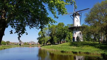 Mühle Tholen