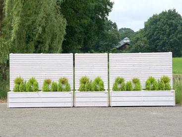 Sichtschutz mit Pflanzkasten aus Holz, Transparent Geölt Weiß