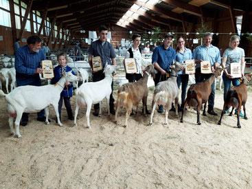 Gewinner der Mittelländischen Ziegenschau 2019