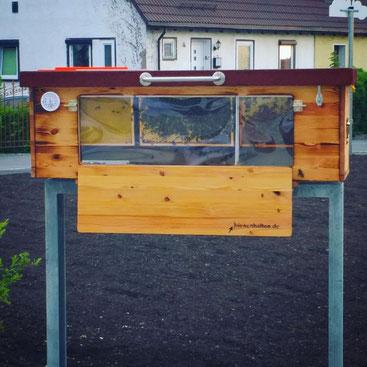Bienenhaus Schule Unterricht Bienen