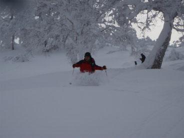 新雪・深雪・パウダー・・・・