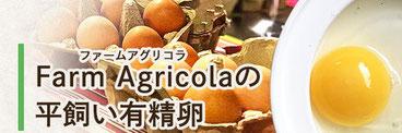 シーガルは障がい者就労支援を行っている     「一般社団法人 Agricola」さんを応援しています。