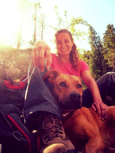 educatore cinofilo bologna addestratore cane