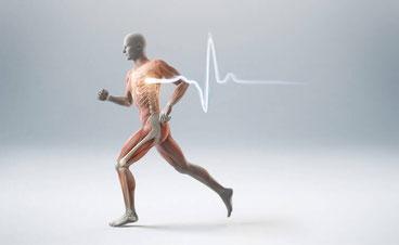 komplexes anatomisches wissen in verbindung mit eigenen erfahrungen und analytischem denken sind wichtige eigenschaften eines therapeuten. behandlungen nach einheitsschema helfen erkrankten selten. eigene ideen gehören in die behandlung.