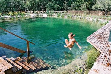 Calidad del agua en piscinas ecológicas